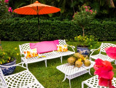 Clementine_backyard